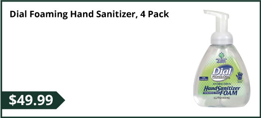 Dial Foaming Hand Sanitizer, 4 Pack